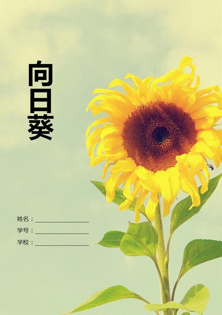 向日葵封面