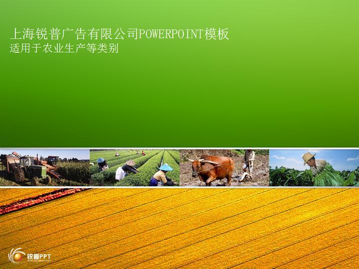 绿色农业类ppt模板模板免费下载