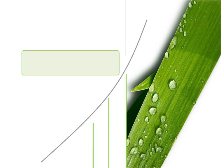 清新绿叶背景精美ppt模板免费下载图片