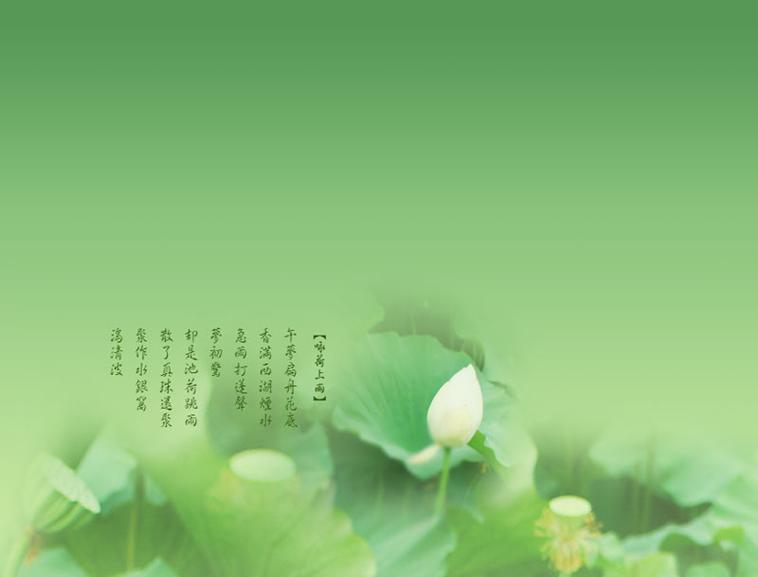 背景 壁纸 绿色 绿叶 树叶 植物 桌面 758_577图片