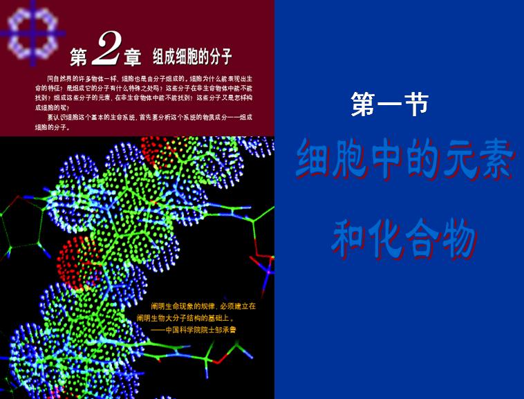 细胞中的元素和化合物模板免费下载