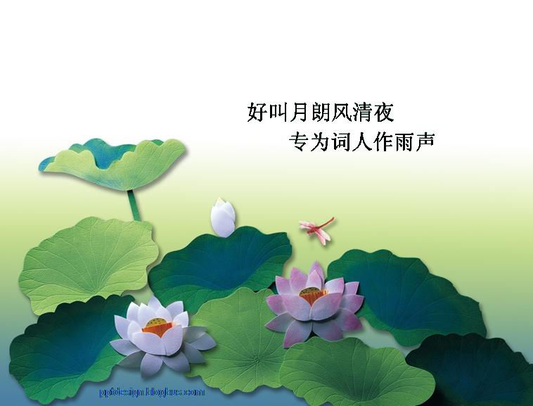 池塘美丽荷花ppt_模板免费下载