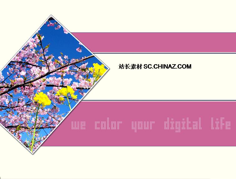 粉色桃花风格ppt模板_模板免费下载_64265- wps在线