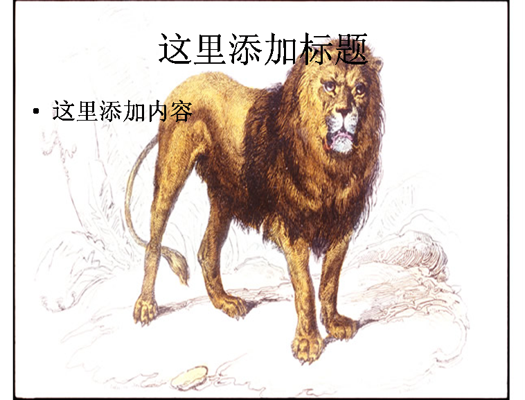 手绘狮子图片
