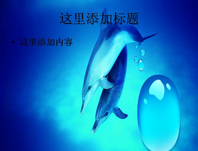 可爱海豚ppt