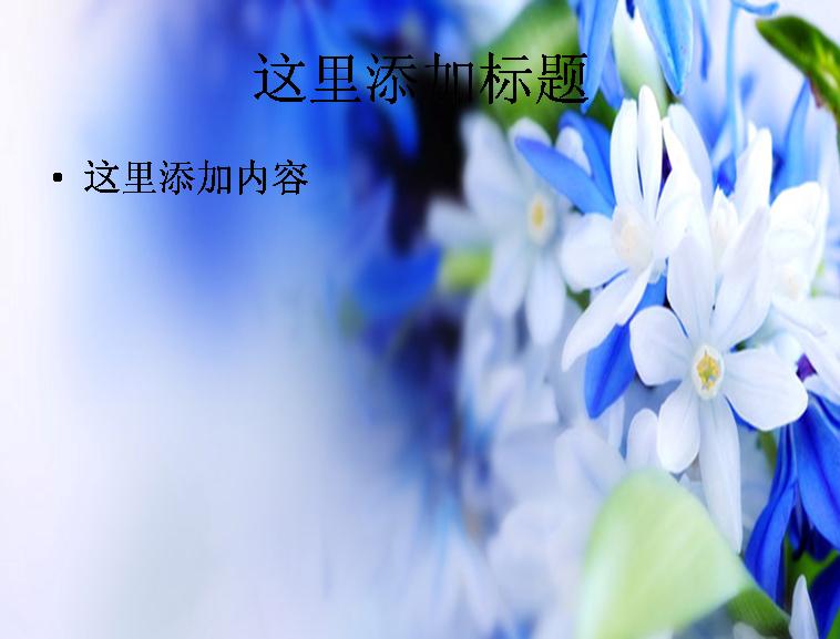 蓝色小花背景模板免费下载