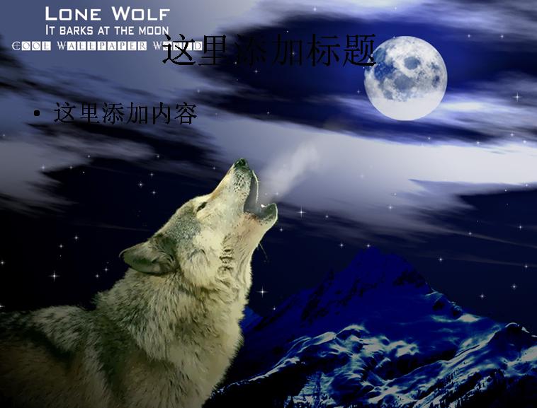 吼叫中白色的狼(2)