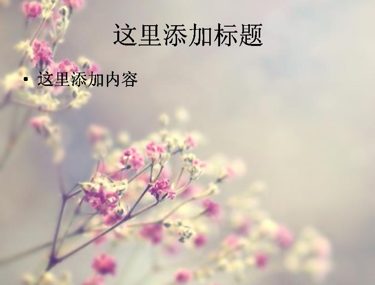 填入心头的唯美小清新花朵高清ppt(8)