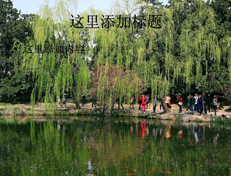 杭州西湖十景图片 2