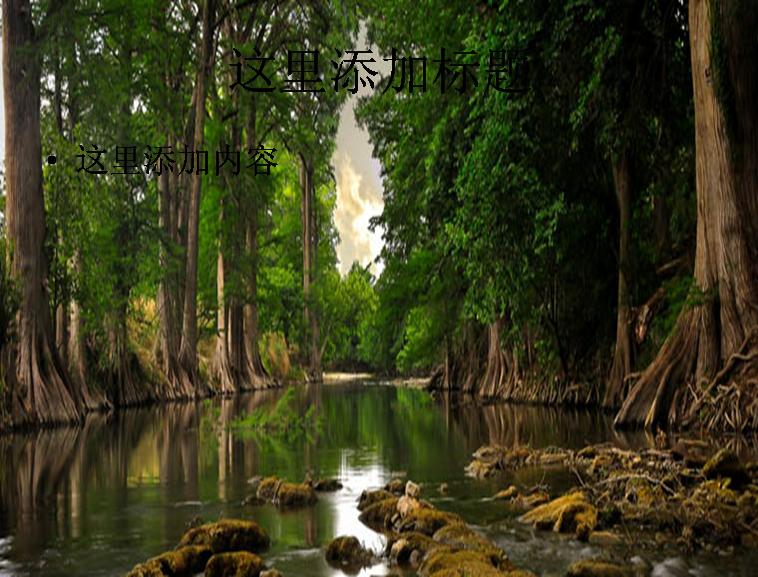 森林小河风景ppt