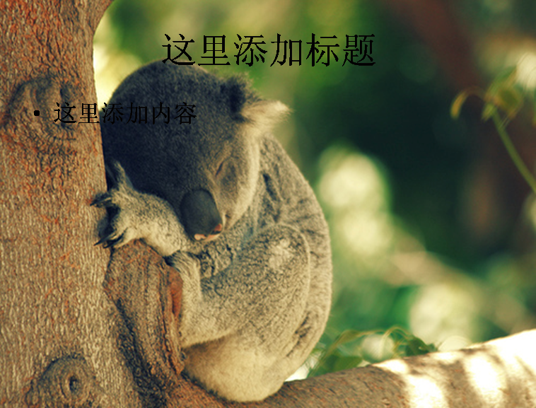 超可爱的小动物图片大全系列2608模板免费下载