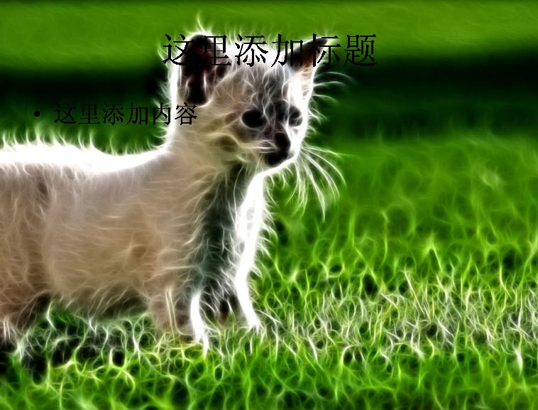 光线描绘猫科动物ppt模板免费下载