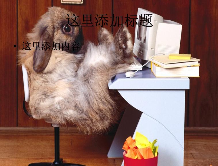 可爱小兔子ppt(27_30)
