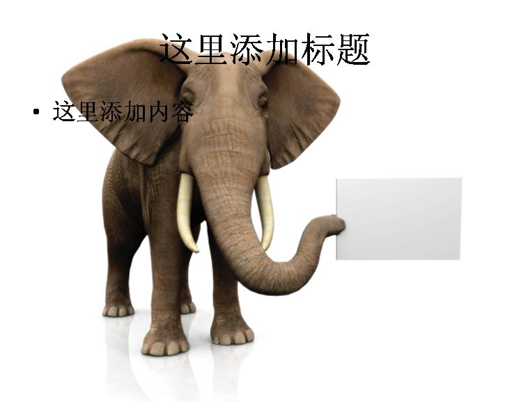 大象拿着空白纸板图片模板免费下载