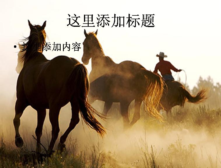 奔腾的马匹图片ppt素材动物素材模板免费下载