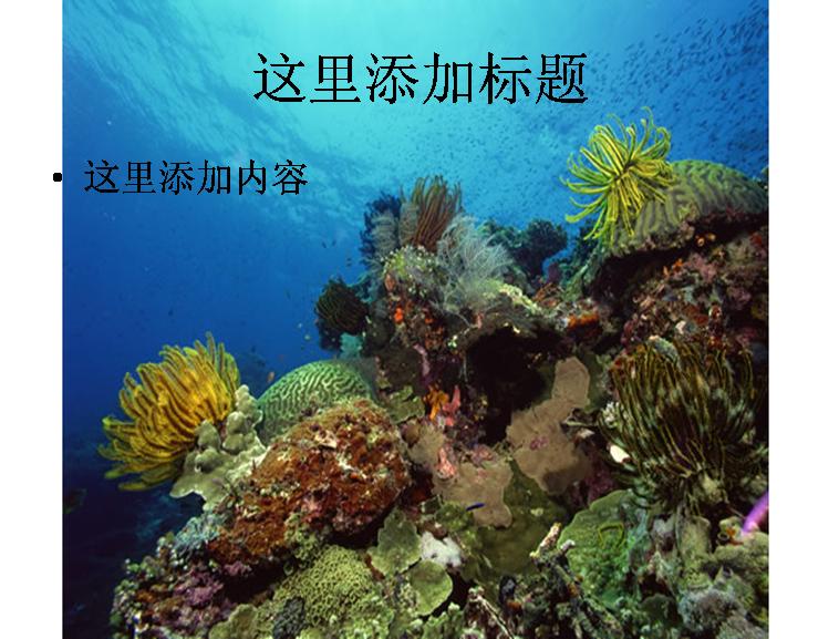 壁纸 海底 海底世界 海洋馆 水草 水生植物 水族馆 758_577