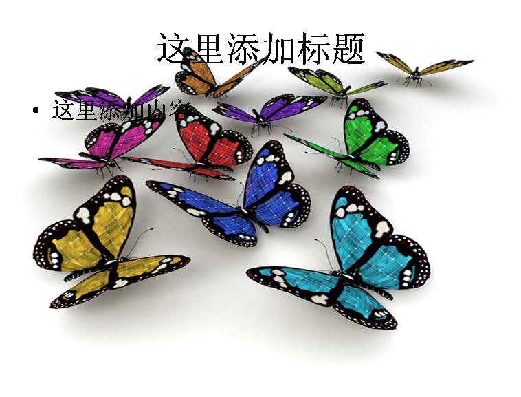 彩虹岛蓝蝴蝶发型