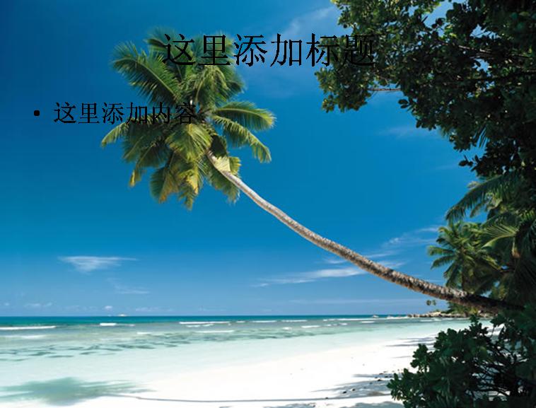 夏威夷海滩椰树模板免费下载