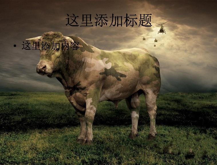 搞笑动物风景图片电脑高清ppt封面(15)模板免费下载