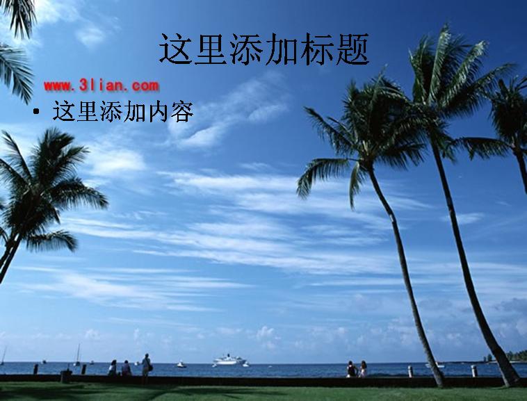 海滩椰树蓝天
