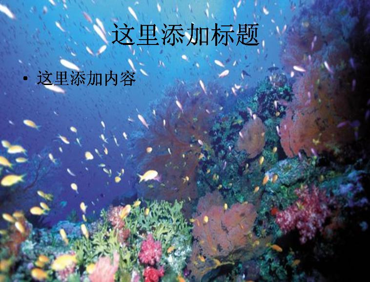 世界海边高清图片