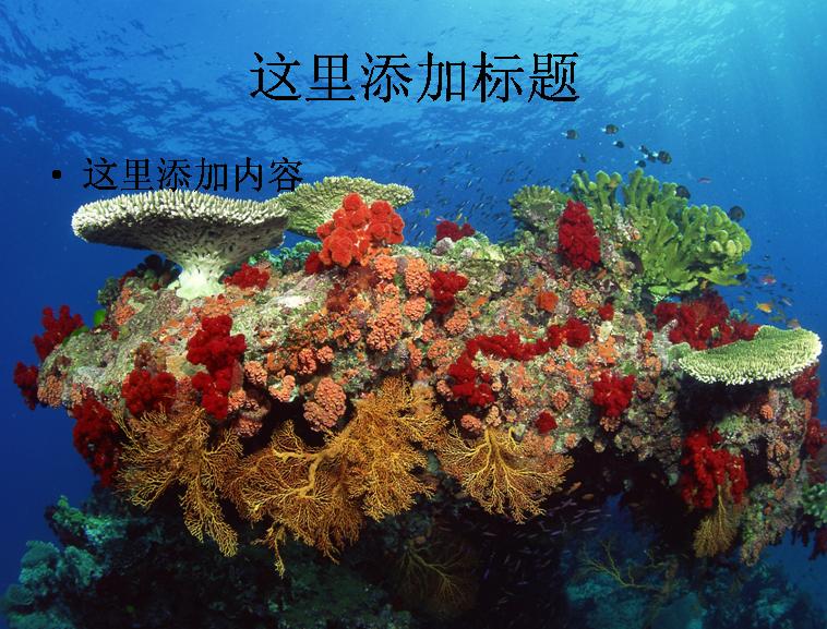 电脑风景ppt封面海底世界背景图片(4)模板