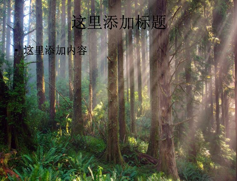 电脑高清ppt封面大自然风景图片(8)模板免费下载