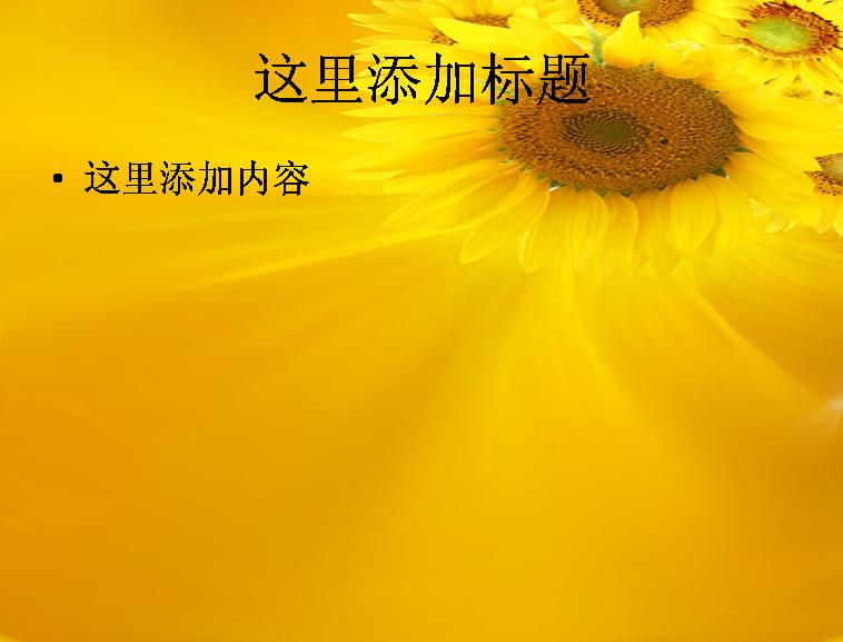 向日葵背景图片ppt素材-10花卉图片ppt模板免费下载