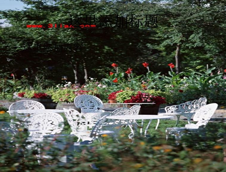 园林花卉图片ppt