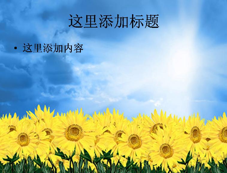 天空向日葵图片ppt素材花卉图片ppt