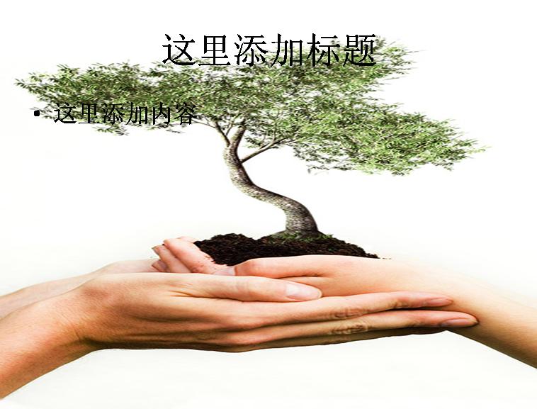 手捧大树图片ppt素材植物素材模板