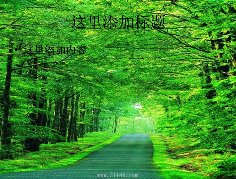 树林中小路图片ppt