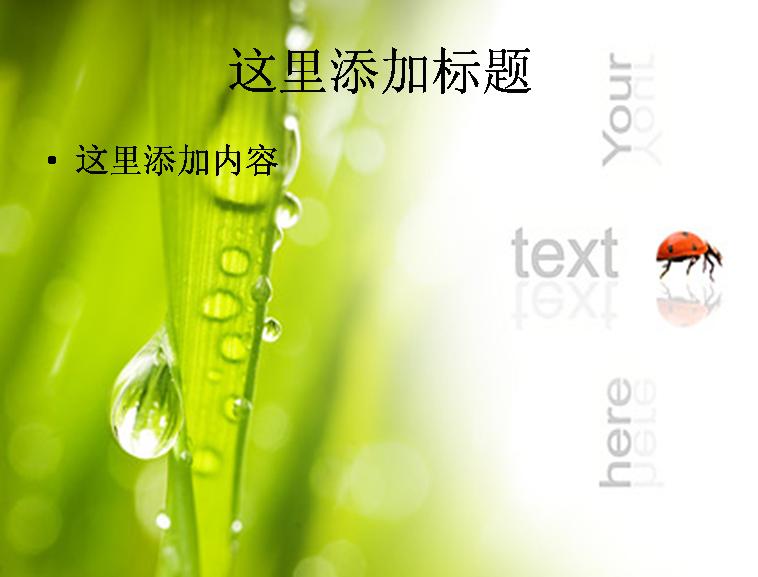 植物与瓢虫图片ppt素材-3植物素材模板免费下载