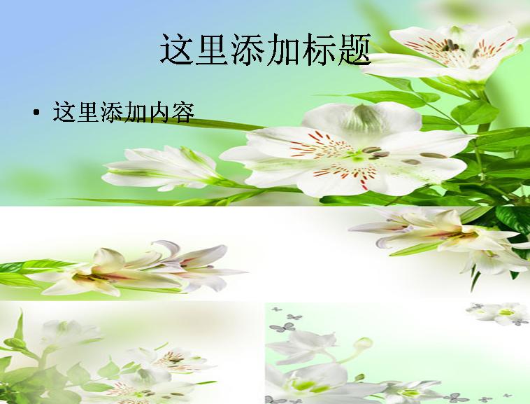 洁白百合花背景高清图片ppt模板