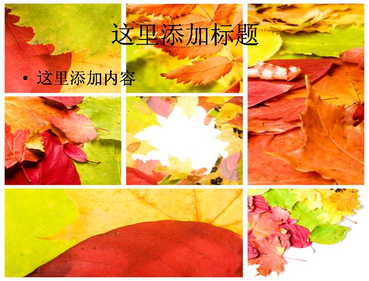 秋天树叶图片ppt