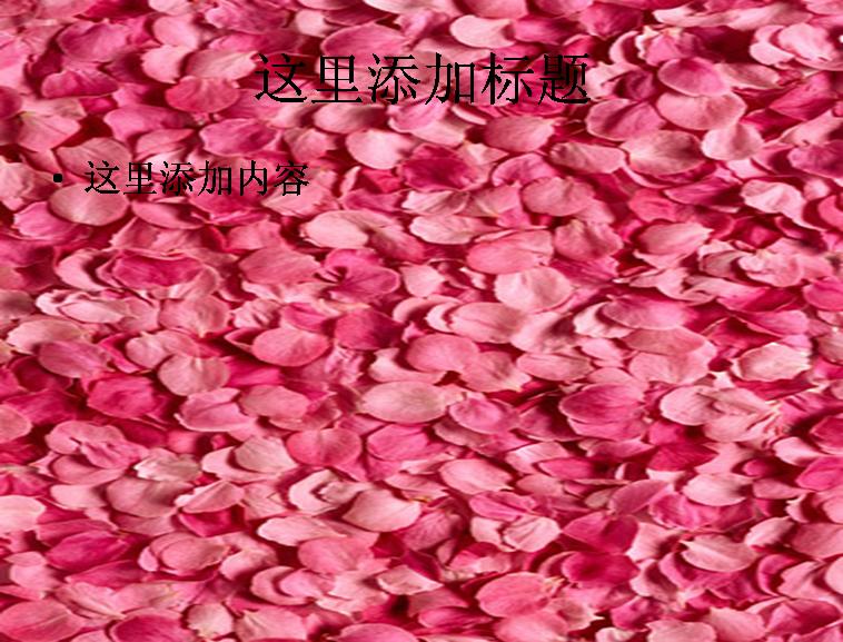 粉红色玫瑰花瓣背景图片ppt素材花卉图片ppt
