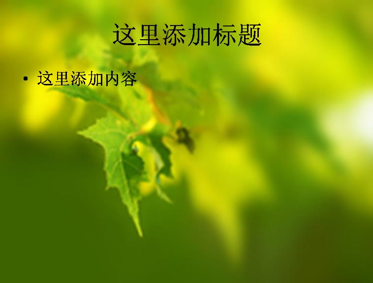 中英文简历模板专题  蓝色商务ppt模板专题  母亲节ppt模板专题  绿色
