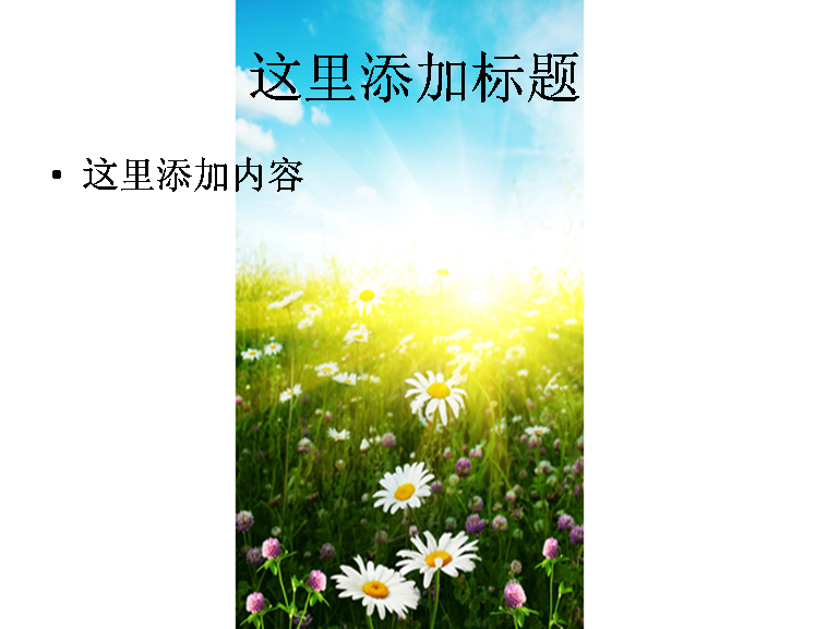 阳光下的花海图片ppt模板免费下载_116384- wps在线