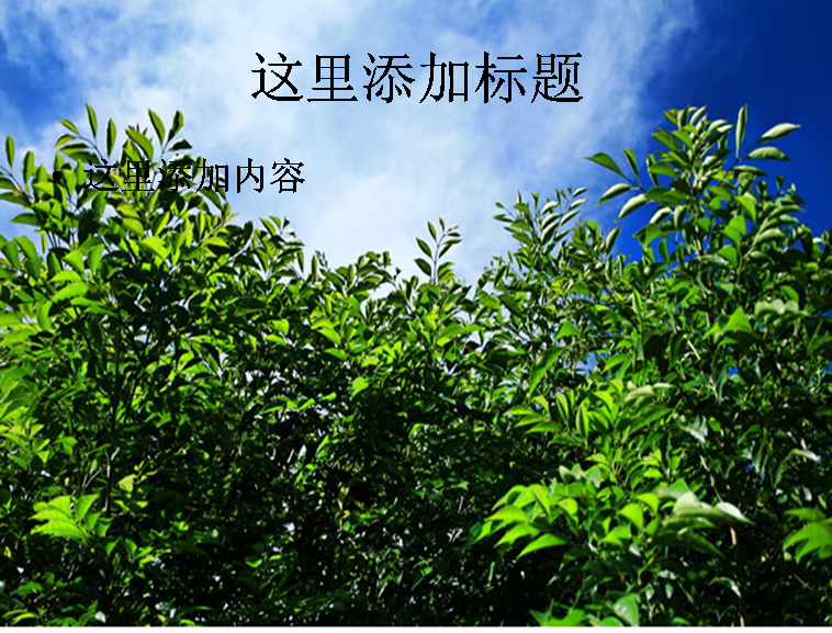 高清树木图片ppt模板免费下载_116491- wps在线模板