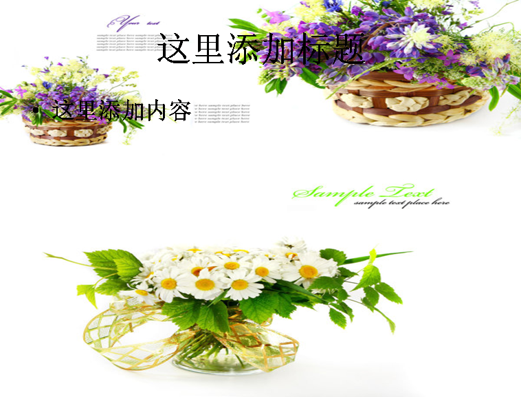 鲜花背景图片ppt
