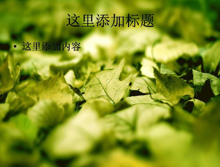 保护眼睛绿色风景高清