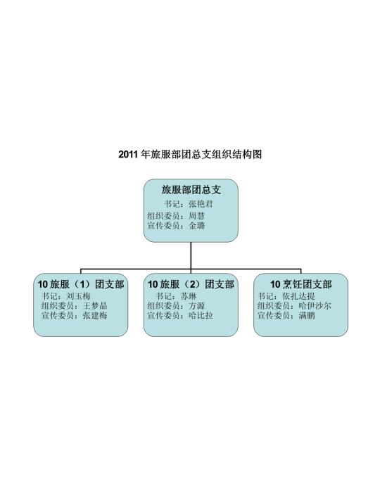 共青团组织结构图 支持格式:word wps 文件大小: