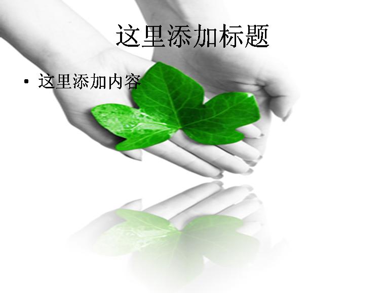 双手捧着绿叶图片ppt模板免费下载