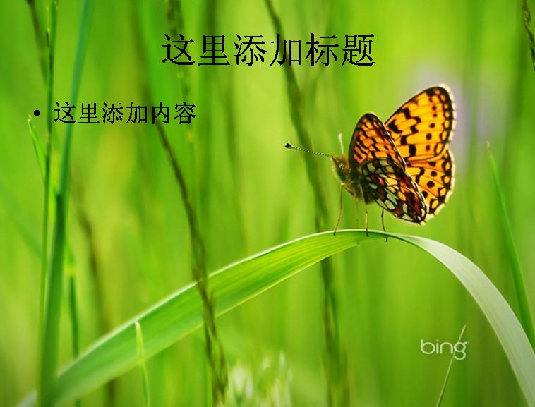清新简约企业宣传公司介绍  2014磨砂泼墨通用模板  静态中国风简约