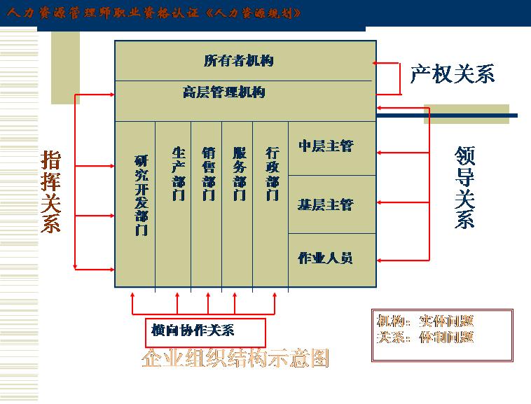 组织结构补充模板免费下载_183379- wps在线模板